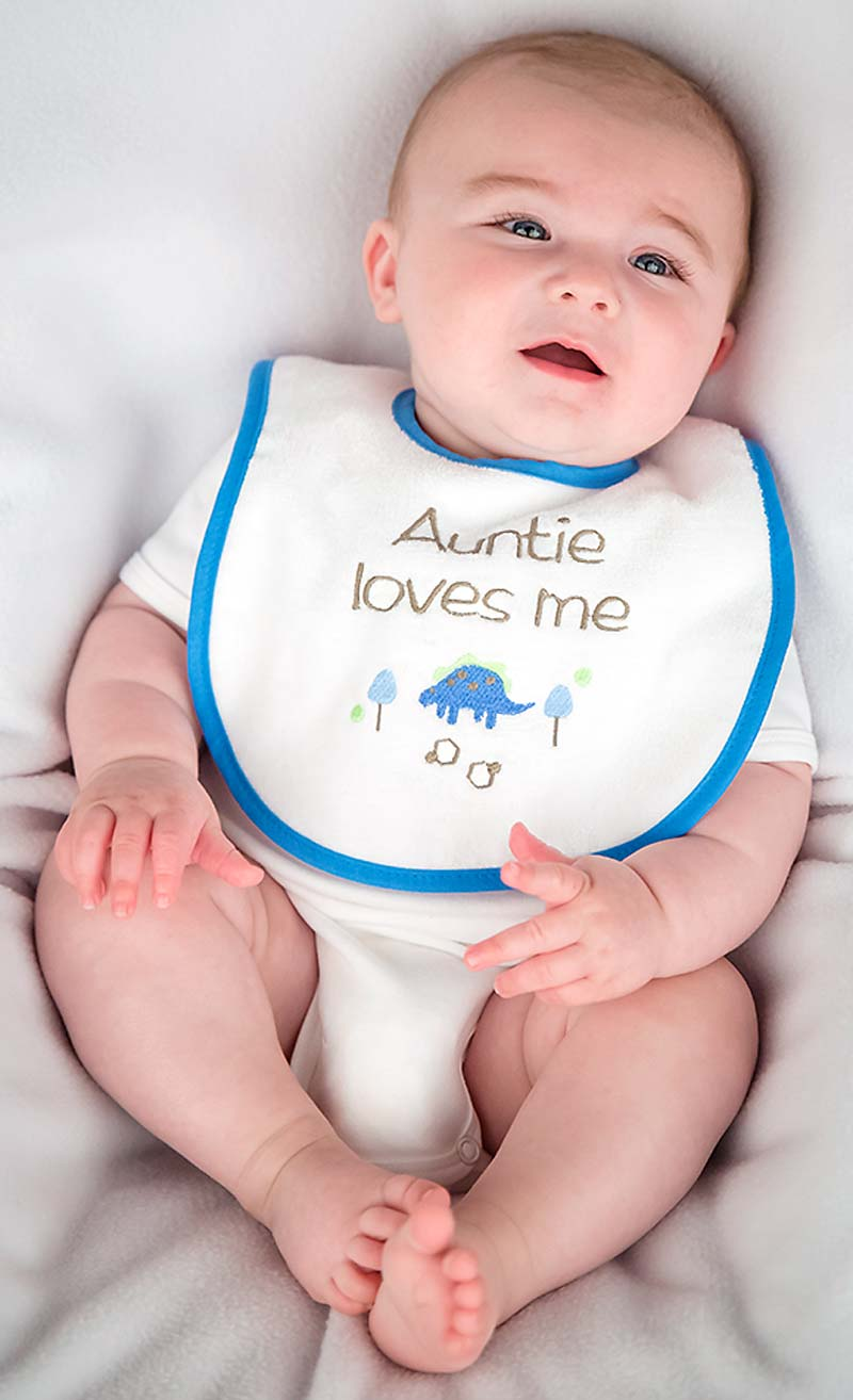 """Auntie Loves Me"" Boy Bib"